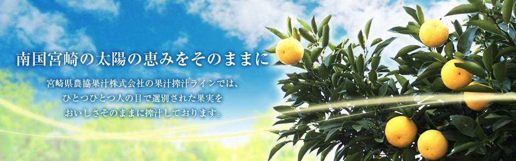 宮崎県で育った日向夏を使用